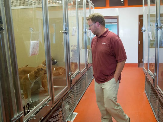 Paul Richardson, kennel supervisor and interim director of operations walks through the adoption center at the Animal Service Center of the Mesilla Valley on Thursday, Sept. 21, 2017.