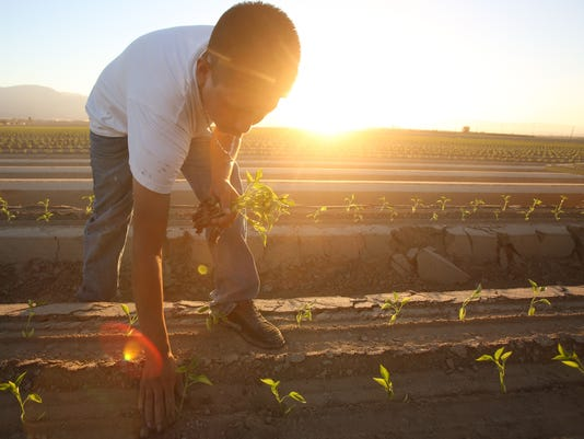 Farmworker editorial 120215