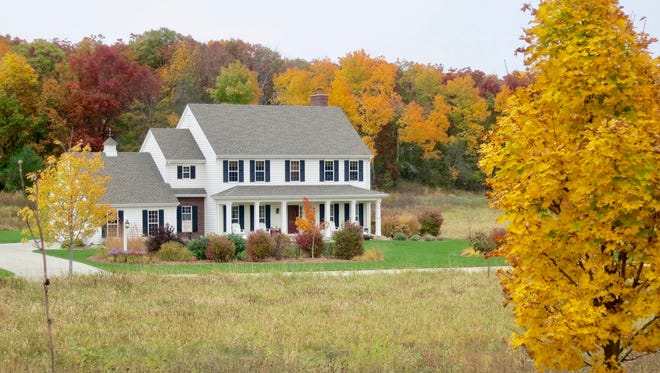 Autumn is an ideal time to plant a sapling or take a close look at the existing trees on your property.
