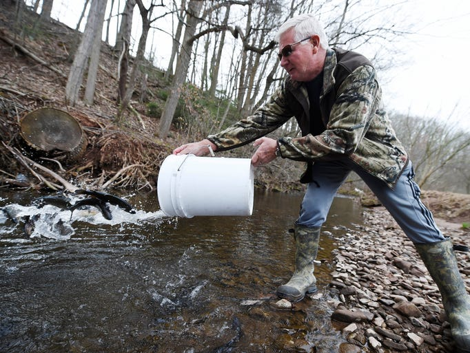 Photos fish creek trout stocking for Pa fish stocking