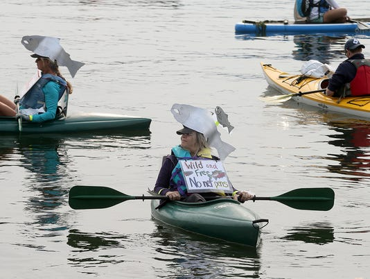 Salmon-protest-1.jpg