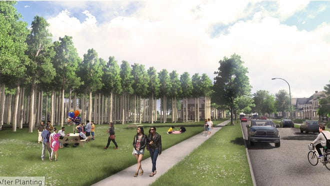 A rendering of a Fresh Coast Capital project in its tenth year after planting hybrid poplar trees on vacant property. The Chicago-based startup is expected to launch a pilot program on a vacant Spring Street parcel. The organization harvests the trees after 15 years, resells them and plants more to make a return on its original investment.