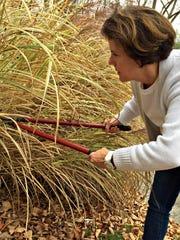 fall landscaping checklist - cutting back perennials