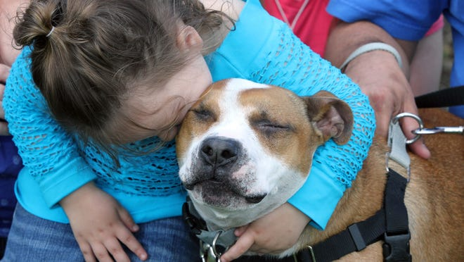 Kelsey James hugs her dog Reckless, whom her parents found Thursday at the Monmouth County, N.J., SPCA a year and a half after the dog was lost during Superstorm Sandy.