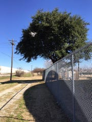 A drone avoids a perimeter fence at a water treatment
