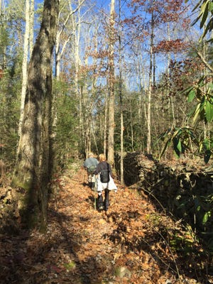 """Great Smoky Mountains National Park will hold """"Black Friday"""" hikes this Friday, Nov. 25."""