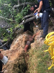 Brevard County Fire Rescue saves man stuck in rocks