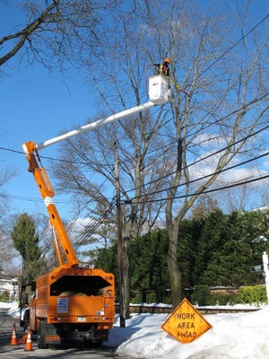 FILE - In this Jan. 27, 2016, file photo, a worker from Asplundh Tree Expert Co., a contractor hired as part of utility PSEG Long Island's annual efforts to trim trees in order to prevent power outages during snowstorms and other severe weather, prunes branches near electrical wires in Plandome Heights, N.Y. Asplundh, the tree-trimming company whose orange trucks are a familiar sight in communities throughout the U.S., pleaded guilty to a federal charge Thursday, Sept. 28, 2017, in a scheme to employ thousands of people in the country illegally, and was ordered to pay a record $95 million fine. Asplundh, based in the Philadelphia suburb of Willow Grove, Pa., is a 90-year-old, family-owned company that employs 30,000 workers in the U.S., Canada, Australia and New Zealand.