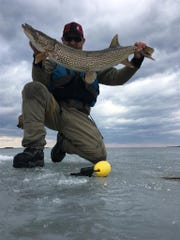 Drew Price with a 39-inch northern pike he caught and released Feb 27, 2017, while ice fishing (tie-ups) in Lake Champlain off Colchester.