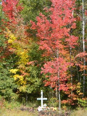 Beautiful trees with colorful leaves seem to surround the white cross and shrine of Pat Sanders.