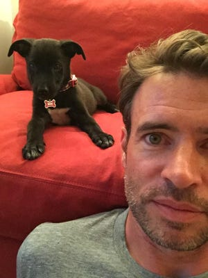Scott Foley with his new puppy.