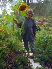 Meg Crawford, owner of Twin Ponds Nursery in Rhinebeck, shows off a large sunflower in her vegetable garden. Crawford offers landscape design and installation services.