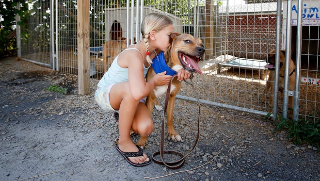 Horseheads resident Shiloh McInerney, 7, kisses Lewis, a Rhodesian ridgeback pit mix, recently at the Horseheads Animal Shelter. McInerney has volunteered at the shelter for the past two-and-a-half years.
