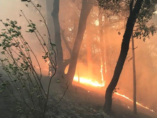 The Delta Fire burns near Pollard Flat, about 35 miles