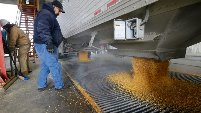 In this image from Jan. 6, 2015, corn is delivered to the Green Plains ethanol plant in Shenandoah, Iowa. Roughly 100 trucks a day filled with corn flow into the ethanol plant in southwest Iowa even as crude oil prices continue to collapse.