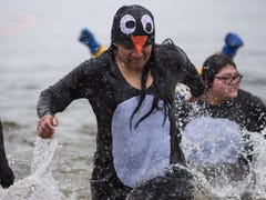 Things to do in Northern Colorado: 'Friends' musical parody, Polar Plunge, beer dinner, Paw Patrol