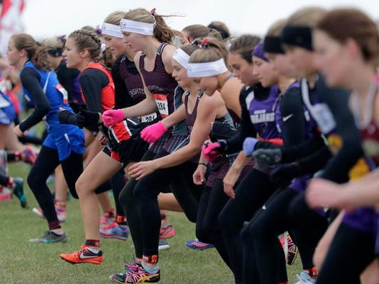 636448180134300329-USATW-State-Cross-Country-GD3-1137-102817-wag.jpg