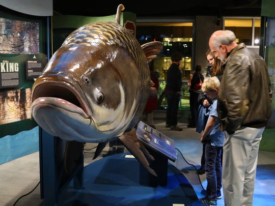 """Monster Fish is on exhibit at The Discovery through"