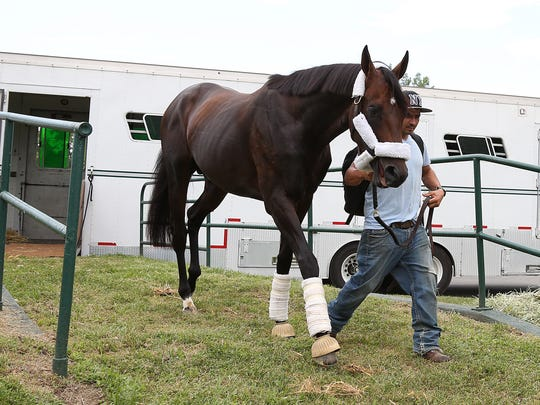 Preakness winner  Exaggerator arrived at Monmouth Park Thursday afternoon  with groom Enrique Morales for Sunday's $1 million Grade I betfair.com  Haskell Invitational. Exaggerator will renew his rivalry with Kentucky Derby Winner Nyquist, who he defeated in the Preakness,