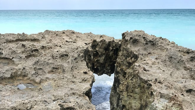 Blowing Rocks is a 73-acre preserve on Jupiter Island maintained by The Nature Conservancy.