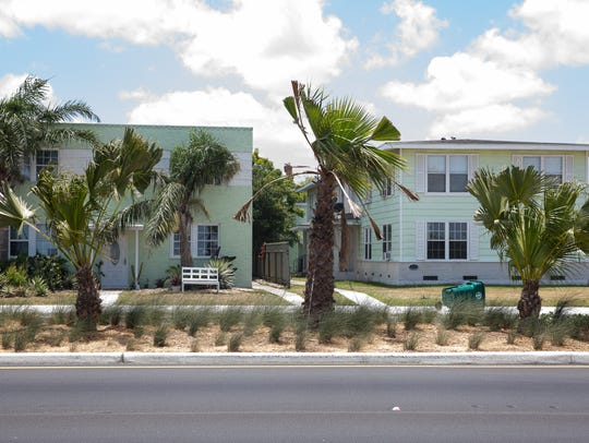 Residents who live near these palm trees that were