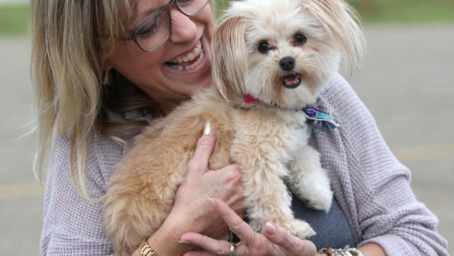 """Kat Kirven snuggles with a porkie poo named """"Stella"""" during Paws in the Park at the Plain Township Farmers Market in Veteran's Park in Plain Township on Wednesday, June 5, 2019."""