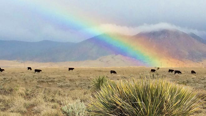 People find treasure of a different kind on the range in Lincoln County. Photographer Caroline McCoy captured a rainbow and low hanging clouds during a rain storm.