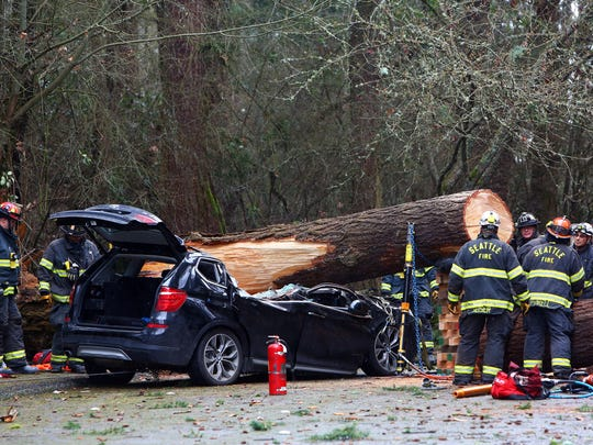 Seattle Fire and emergency crews work to extract the body of a man who died when a tree fell on his car at Seward Park, Sunday, March 13, 2016.  (Genna Martin/seattlepi.com via AP)