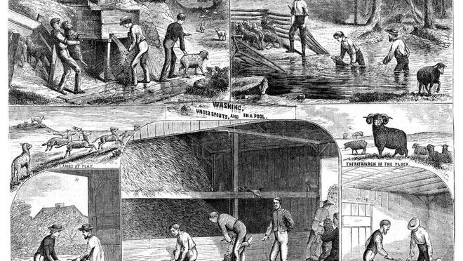 """Rowland Evan Robinson's """"Seasonable Scenes on a Sheep Farm"""" was published in Moore's Rural New Yorker in 1871."""
