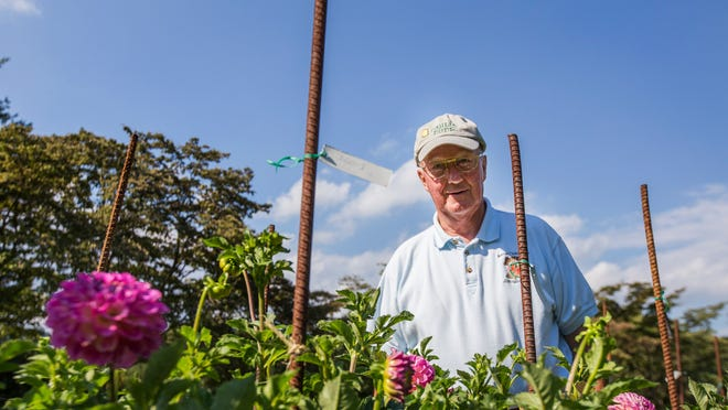 Brent Grant poses for a portrait with the dahlias in his garden.
