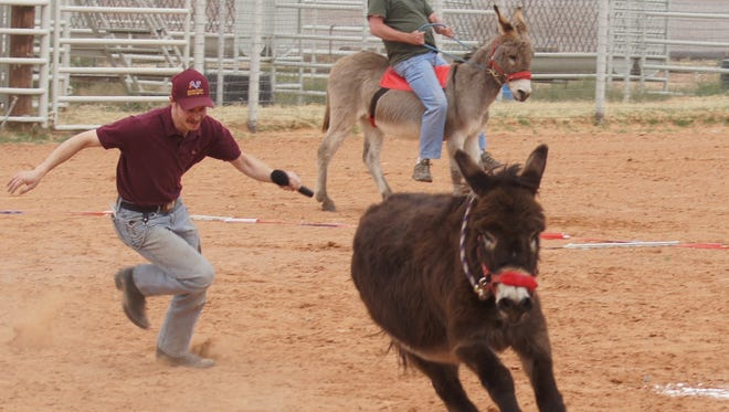 A member from the Alamogordo Police Department chases his donkey during a donkey baseball fundraising event in March 2014 at the Otero County Fairgrounds.
