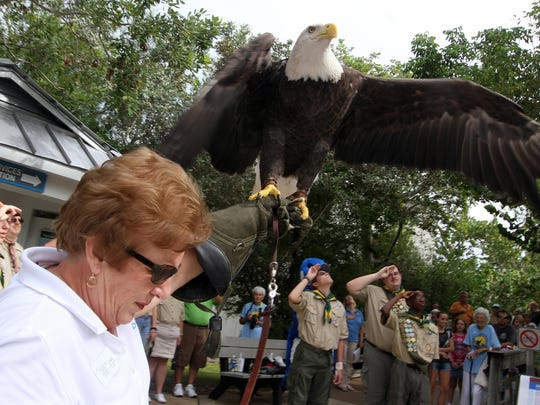 """""""Ding"""" Darling Days annual festival kicks off Oct. 18 with free events for the weeklong birthday celebration at J.N. """"Ding"""" Darling National Wildlife Refuge in Sanibel."""