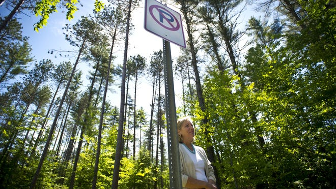 Dana Hanley, director of the Essex Community Development Department, looks out over property off Allen Martin Drive that, for the better part of 40 years, has been in a tug of war between land owners who want to develop it and town regulations designed to conserve it.