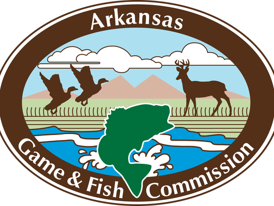 Agfc plans two trout management workshops for Game and fish commission