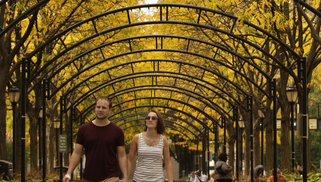 Piatt Park - Downtown  Husband and wife Trey Tatum, left, and Bridget Leak, of Mount Adams enjoy the fall colors as they stroll beneath the bright yellow canopy of Locust leaves in Piatt Park downtown Thursday afternoon.