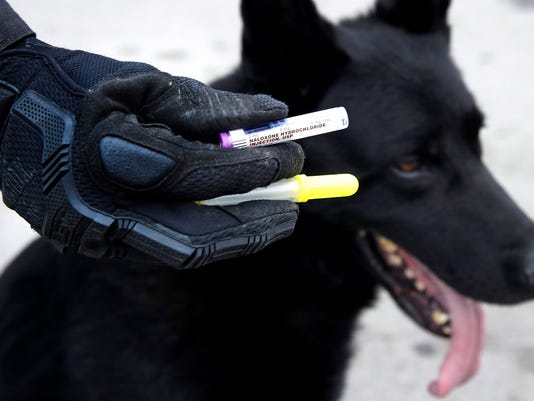Police dogs 4