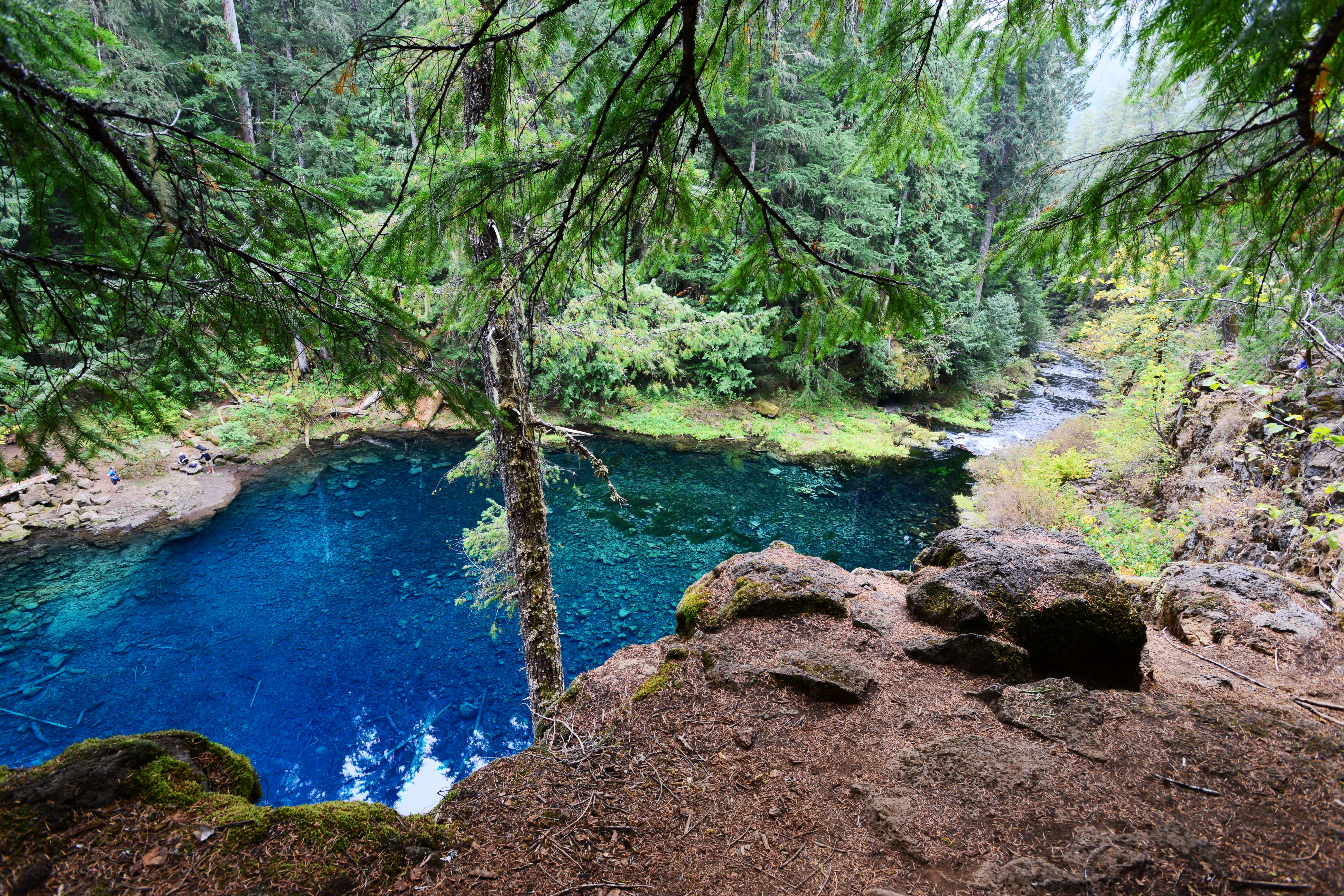 Tamolitch blue pool Waterfall Statesman Journal Should Feds Take Action To Prevent More Injuries At Blue Pool