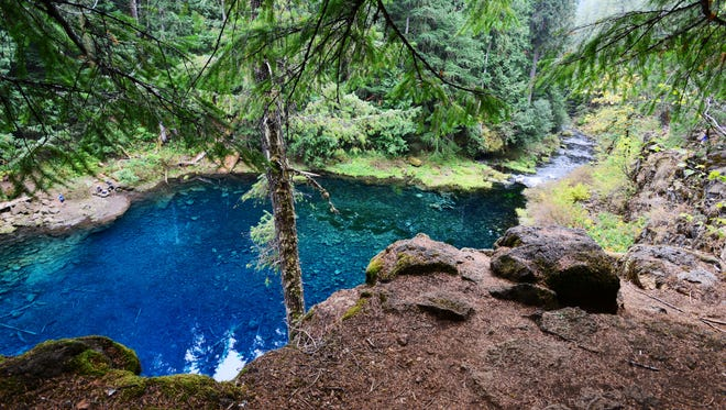 Tamolitch Pool, also known as the Blue Pool, is where the McKenzie River reappears from an underground channel. Its stunning shades of blue and scenic surroundings make it a popular destination in the Willamette National Forest.