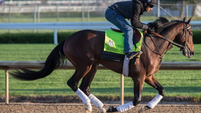 Blended Citizen galloped over the Churchill Downs track. The Doug O'Neil trained Kentucky Derby entrant will need other horses to drop out of the race for it to get a chance to run. May 1, 2018.