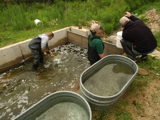 Fishery technicians and biologists collect data that helps ensure fish populations for the future.