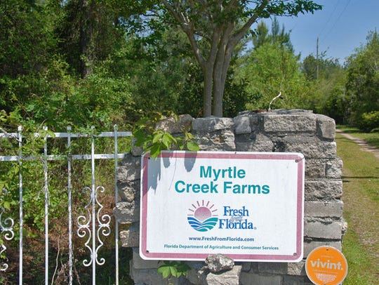 Myrtle Creek Farm is open for blueberry u-pick mid-May