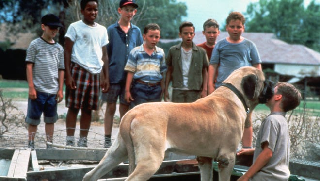 """This film image shows Tom Guiry as Scotty Smalls, being licked by The Beast  in a scene from the 1993 film """"The Sandlot."""""""
