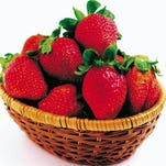 """Berries of all kinds are characterized as """"superfoods,"""" full of antioxidants, fiber, an array of vitamins and minerals, even protein."""