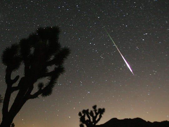 A shooting star passes over Joshua Tree National Park