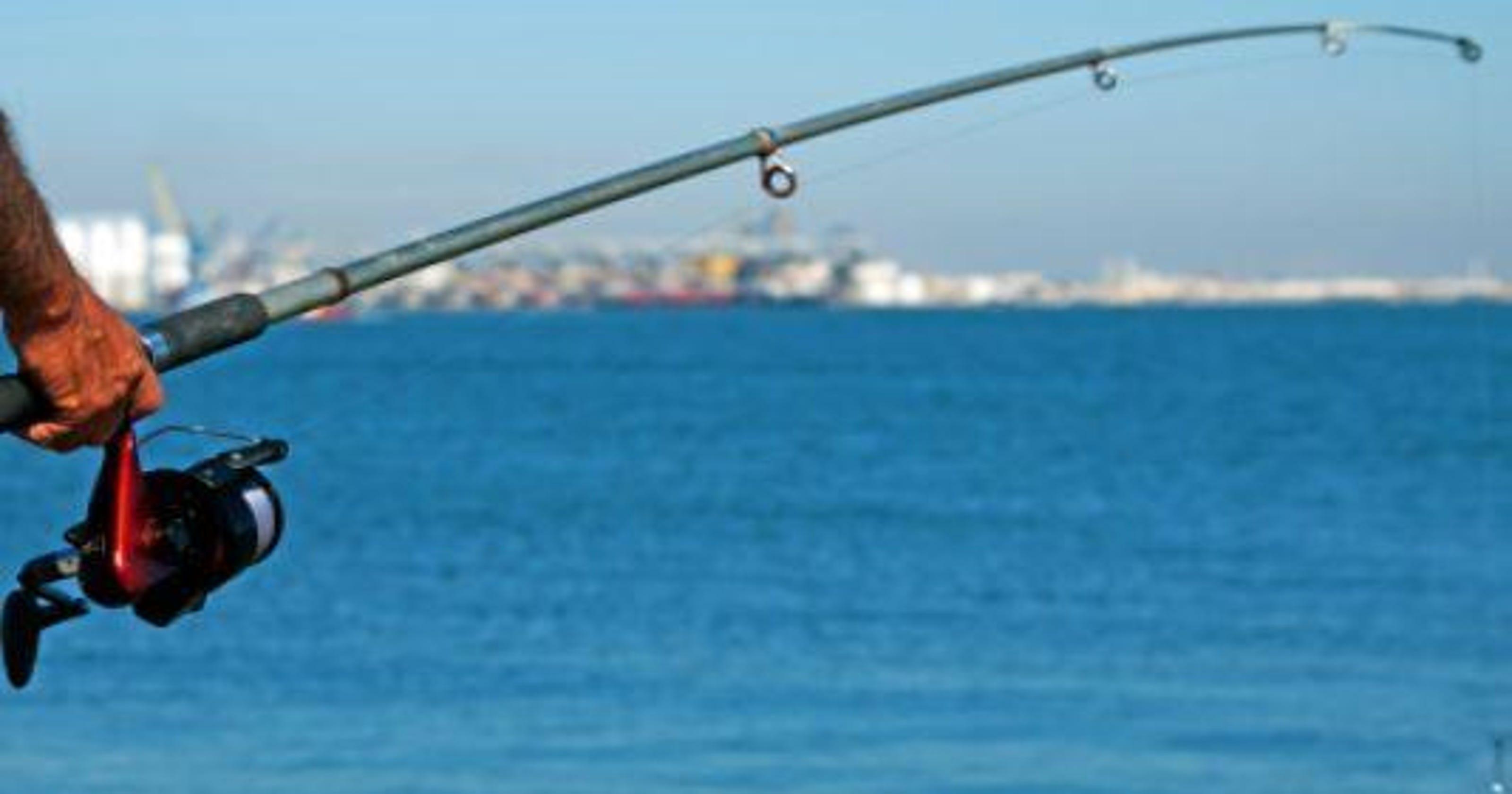 michigan dnr weekly fishing report