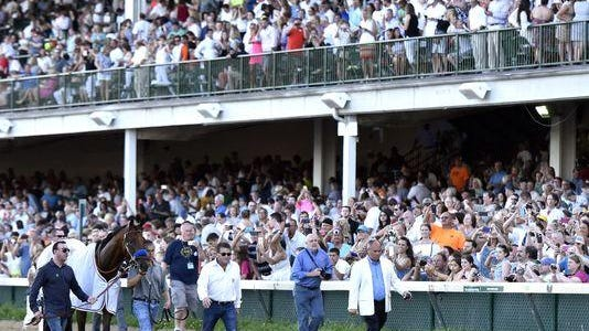 American Pharoah, shown parading in front of 30,000 fans at Churchill Downs last month, will be available for fans to see on up to four occasions at Monmouth Park before the Haskell.