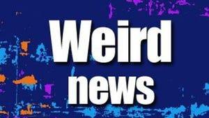 Weird news logo