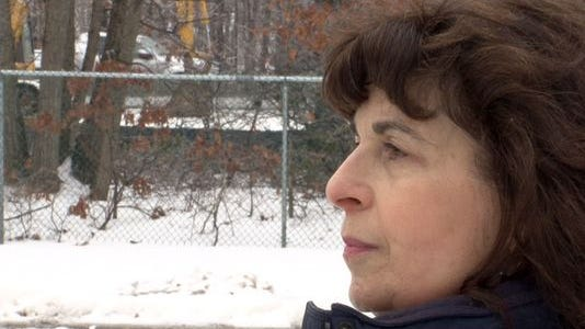 Michele Spector is interviewed behind her Evergreen Woods home in Brick Township Monday, March 2, 2015, while traffic passes on the Garden State Parkway. The traffic is clearly visible after trees and brush were removed that served as a buffer between the homes there and the highway.