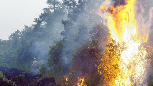 The U.S. Forest Service will conduct a prescribed burn in the Macon County area of Nantahala National Forest April 2.