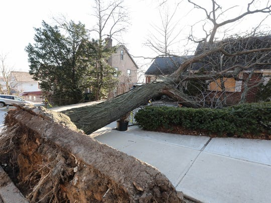 A large tree pulled out of the ground by the nor'easter, sits atop a home along Kimball Avenue in Yonkers as seen, Wednesday, March 6, 2018.